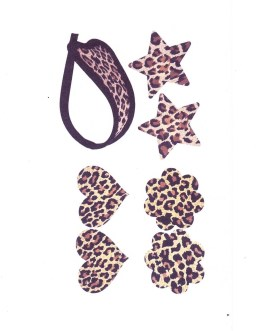 Leopard Print C-String Thong Panties And 3 Styles Of Matching Pasties