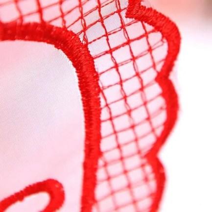 LOVE Heart Sheer Thong Panties w/Beads