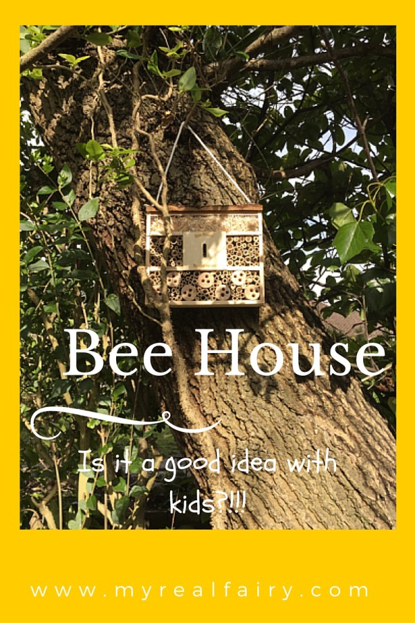 Bee House….is it a good idea with kids?!!!