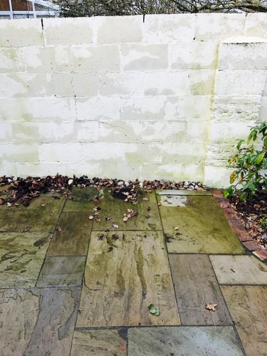 Free Pallet Patio Garden