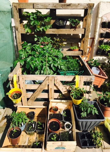 garden patio planter pallet