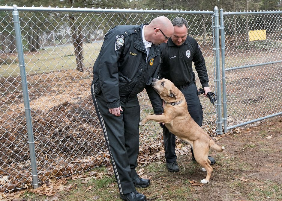 Southington animal control accepting adoption applications for dog     Lt  Stephen Elliott  left  and Animal Control Officer Joshua Karabin pet  dog Sasha