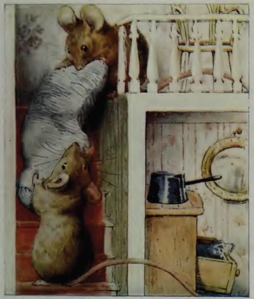 mice thieves