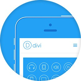 Divi is their premier theme.