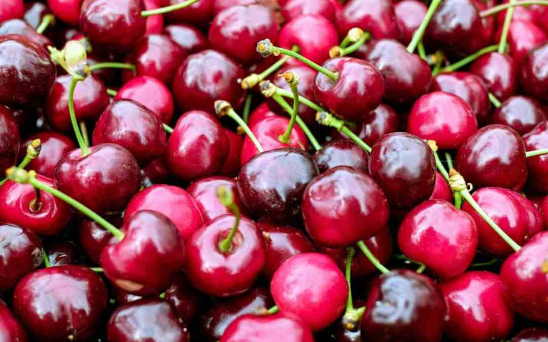 National Cherry Dessert Day and Sour Cherries