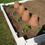 Guest Post-Raised Planter Beds by My Cottage Charm