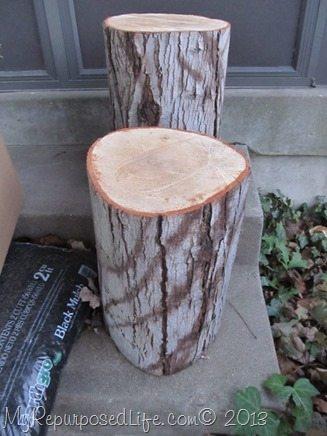 tree-stump