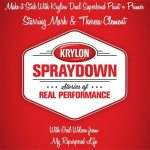 Krylon Spraydown-Make it Stick