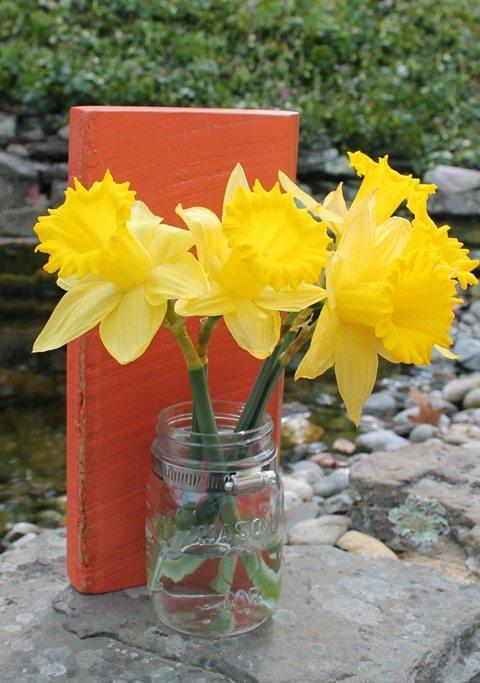 mason-jar-wall-vases