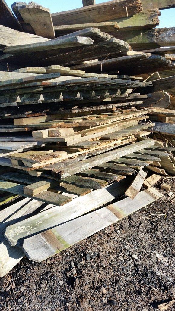 fence-burn-pile