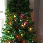 gail vs the Christmas tree