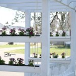 Gutter Planter for Pergola or Arbor