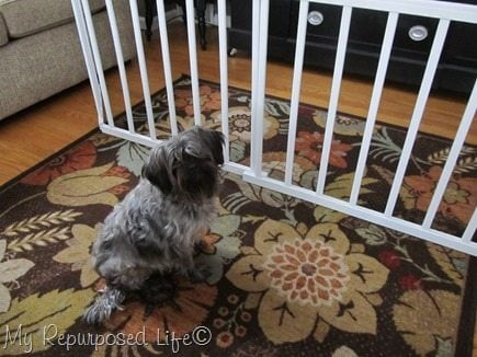 dog-gate-repurposed-crib-rails