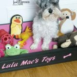 Repurposed Drawer Dog Bed toy Box