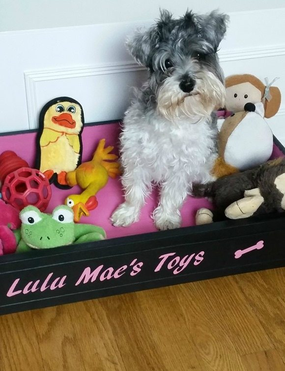 lulu mae loves her customized repurposed drawer toy box dog bed MyRepurposedLife.com