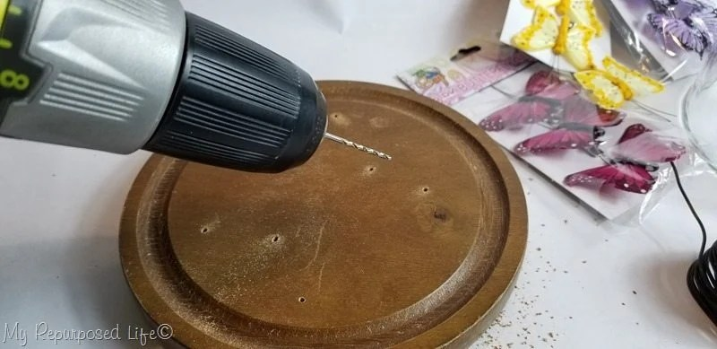 drill holes in wooden base of cheese cloche