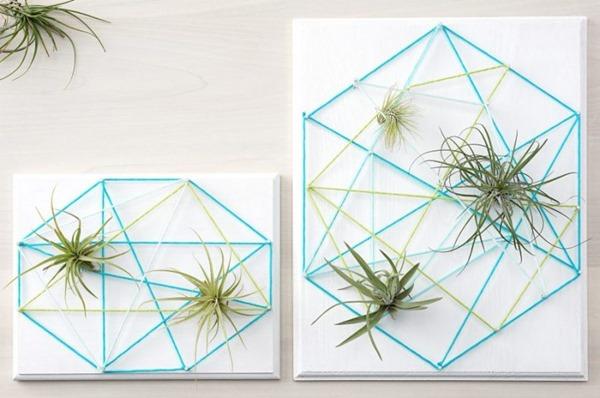 air-plant-string-art-step