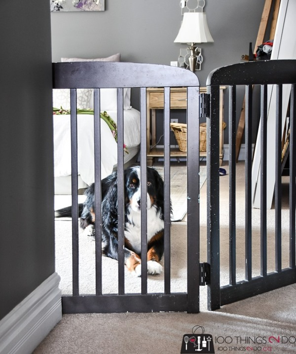 diy free-standing pet gate