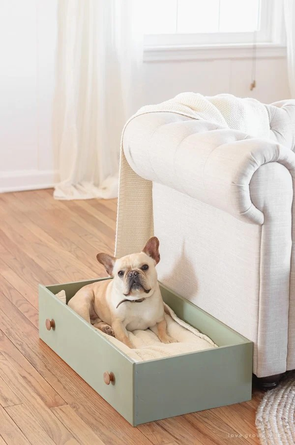 dog bed made from a dresser drawer