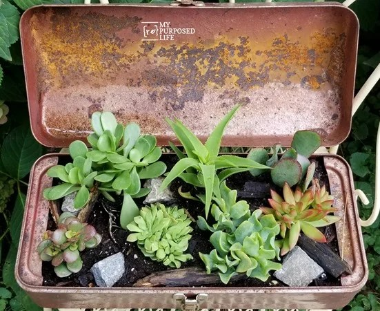 repurposed toolbox planter MyRepurposedLife