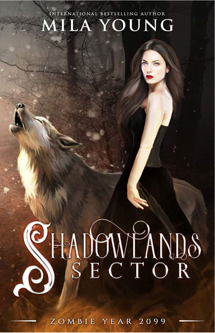 Shadowlands Sector (Zombie Year 2099) by Mila Young