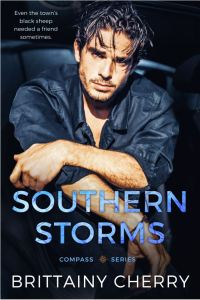 Southern Storms by Brittainy C. Cherry