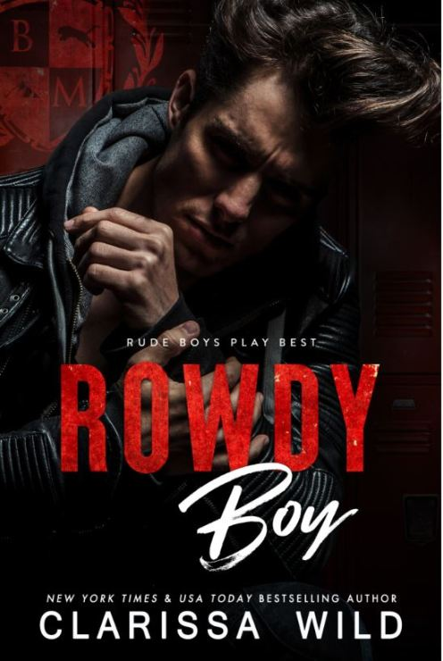 Rowdy Boy by Clarissa Wild