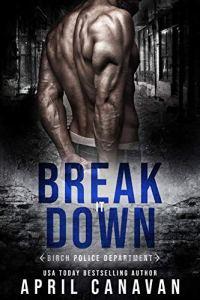 Break it Down by April Canavan