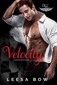 Velocity by Leesa Bow
