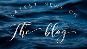 latest news on the blog (1)