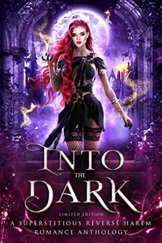 Into the Dark: A Reverse Harem Anthology