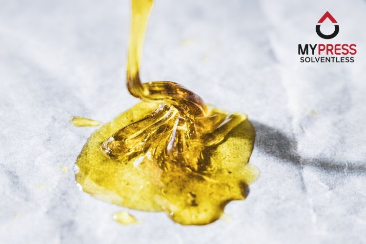What is Rosin? How is it Made? -  MyRosinPress.com - The Best Solventless Rosin Press Available - Portable Rosin Maker