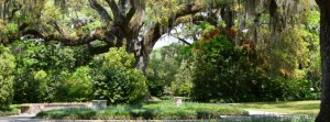 The beauty of Brookgreen Gardens at a discount