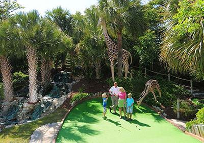 Jungle Safari Mini Golf Discount