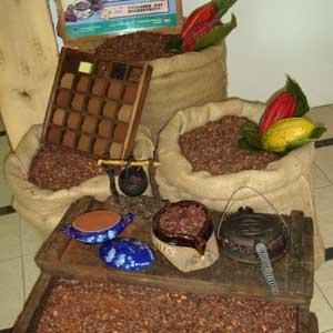 Cocoa Museum
