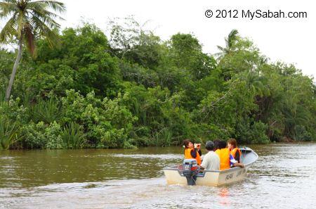 river cruise on Bongawan River