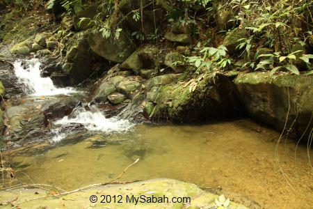 river next to Kiansom trail