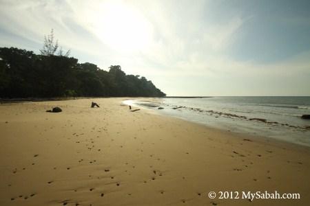 Pagong-Pagong Beach of Pulau Tiga