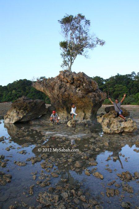 Bird Rock (Batu Burung)