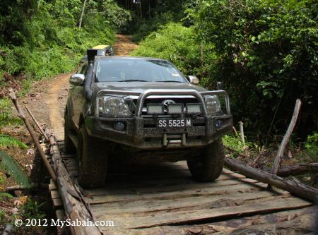 4x4 trip to Imbak Canyon Conservation Area