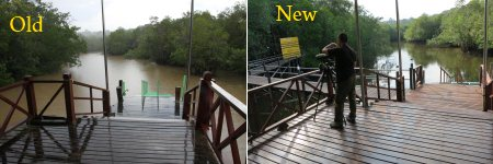 new boardwalk of Sepilok Laut Reception Centre