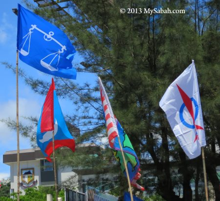different party flags