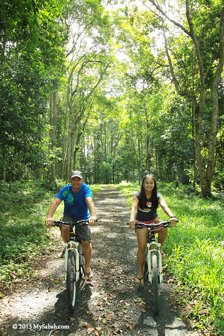 cycling in Taliwas forest