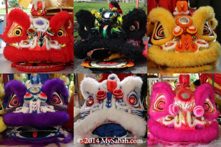 lion heads in different colors