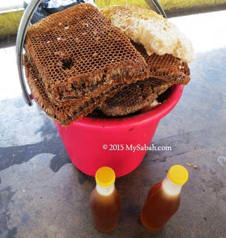 bee nest and bottles of honey