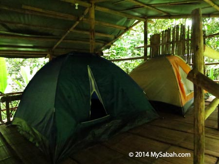 camping tent in Lupa Masa Jungle Camp