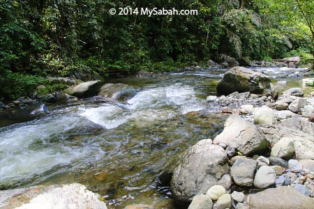 river near to Lupa Masa Jungle Camp
