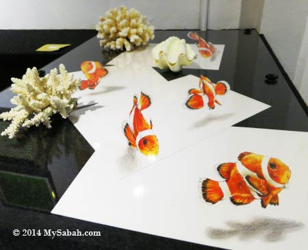 3D Nemo fishes