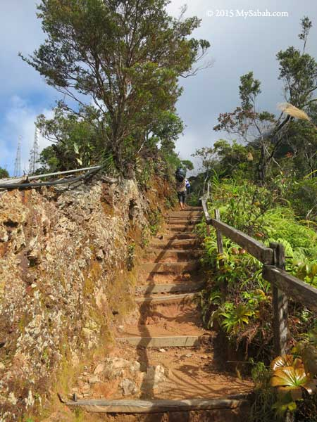 nature trail of Kinabalu Park