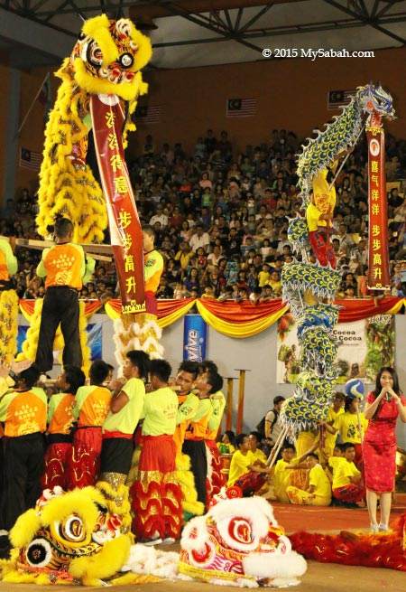 lion and dragon climb high to display scrolls with auspicious words